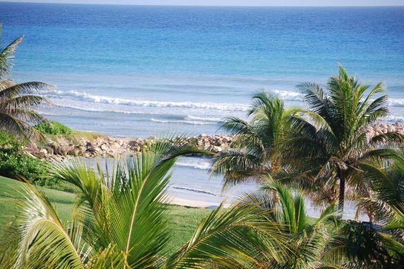 JAMAICA 6