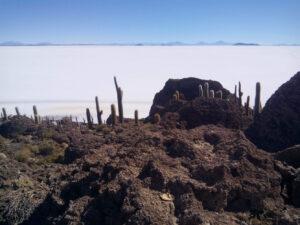 Salar-Uyuni-Y-Desierto-De-Atacama-Joyas-De-Sudamerica-67538c5___medialibrary_original_1338_1003