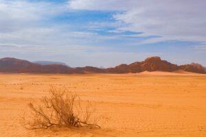 desert-4940294_640
