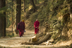 Three Buddhist monks are walking on a mountain trail in the north of India, Dharamsala, India.